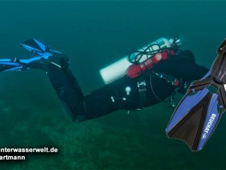 Beuchat Flossen Aquabionic