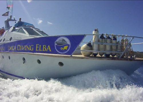Tauchen Elba Unica II