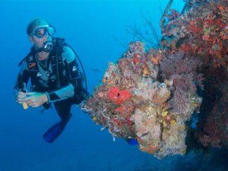 Meeresbiologen im Milaidhoo Resort