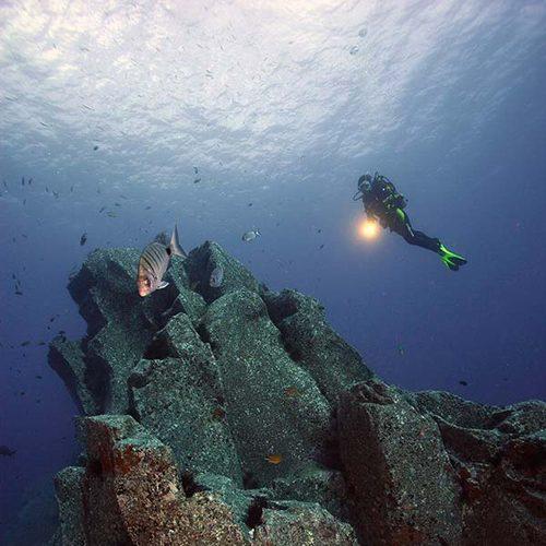 Hausriff Manta Diving