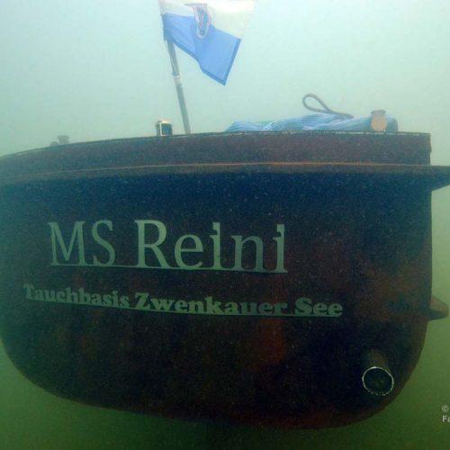 Wrack im Zwenkauer See