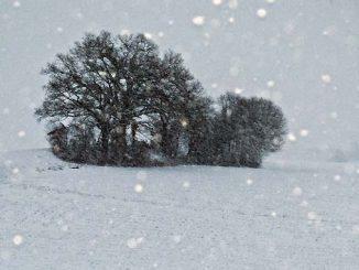 Winterreifenpflicht