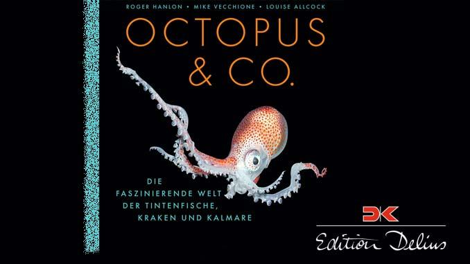 Gewinnspiel Octopus & Co.