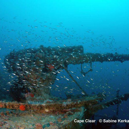 Kerkau-Sabine-Wrack-Cape-Clear-2020-17