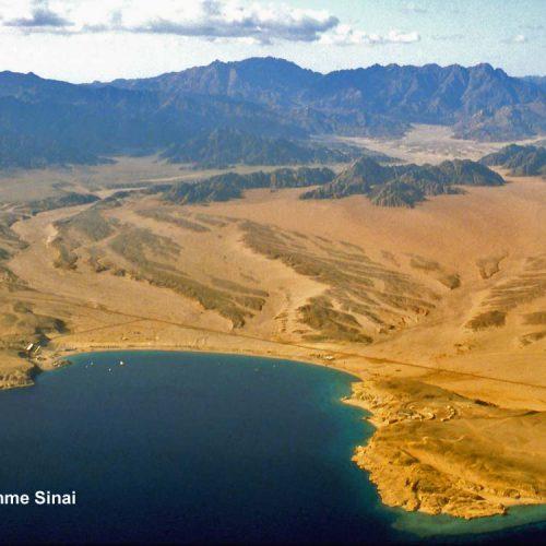 Sinai-divers-2020-12