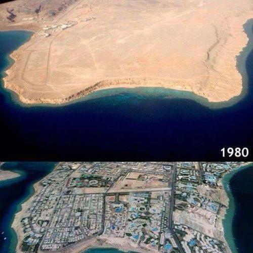 Sinai-divers-2020-13