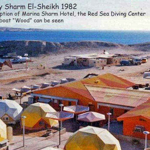 Sinai-divers-2020-14