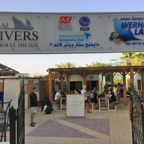 Sinai-divers-2020-19