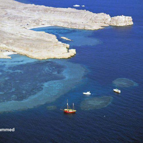 Sinai-divers-2020-26