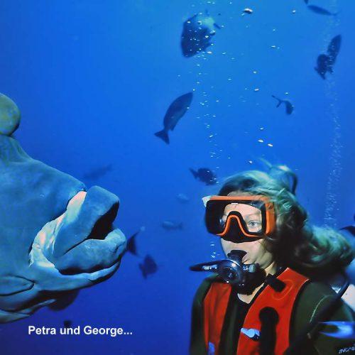 Sinai-divers-2020-33